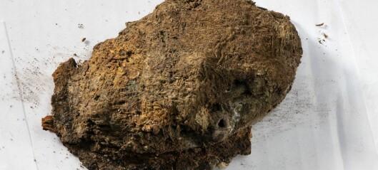 Enestående vikingtekstiler funnet i kvinnegrav