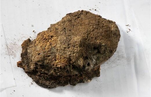 Unique Viking textiles found in woman's grave