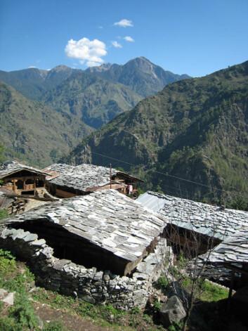 Sour er en økologisk landsby i delstaten Uttarakhand. (Foto: Anna Marie Nicolaysen)