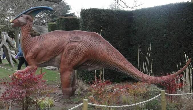 Et annet, og kanskje mer kjent medlem av nebbdinosaur-familien er Parasaurolopus, som du kanskje har sett i filmen Jurassic Park. Dette er en model fra Bristol Zoo i England