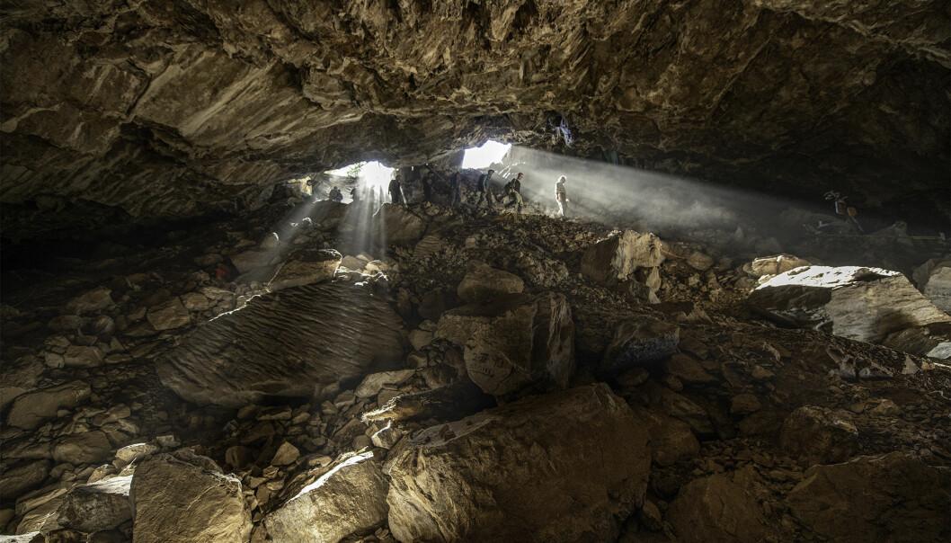 Tiss og avføring etter dyr som levde i Chiquihuite-hulen i Mexico gir forskere DNA-data flere tusen år senere.