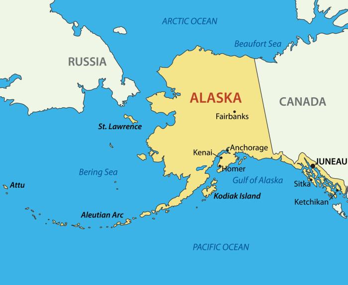 Området mellom Alaska og Russland, som heter Beringstredet, har ikke alltid vært et hav. Helt til omtrent 10 000 år siden var det mulig å gå fra Asia til Amerika. Mange mener det er sånn de første menneskene også kom til Nord-Amerika. Nå mener forskerne at nebbdinosaurene også kom fra Asia til Amerika på denne veien.