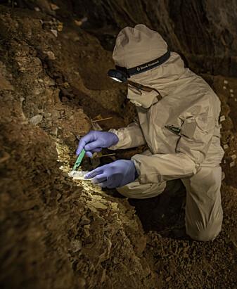 Mikkel Winther Pedersen ved Københavns Universitet tar sedimentprøver fra grotten.