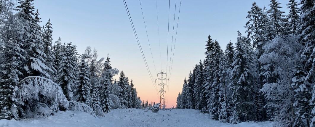 Energi- og klimapolitikk i Norge, Norden og EU er sentralt i den ledige stillingen.