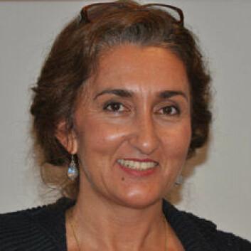 CMI-forsker Nefissa Naguib gikk til sjefen sin og ba om få reise til Kairo. Forsikringspremien gikk noe opp. (Foto: Norges Forskningsråd)