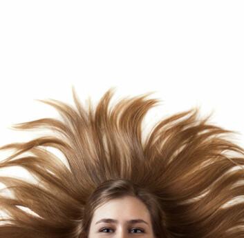 Håret gjemmer et kjemisk avtrykk av alt vi har hatt i blodet. (Foto: Colourbox)