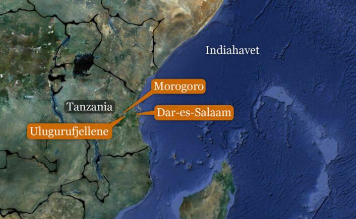 De norske geitene holder til hos bønder i Ulugurufjellene i den østlige delen av Tanzania. (Foto: (Kart: Google Maps/tilpasset forskning.no/Per Byhring))