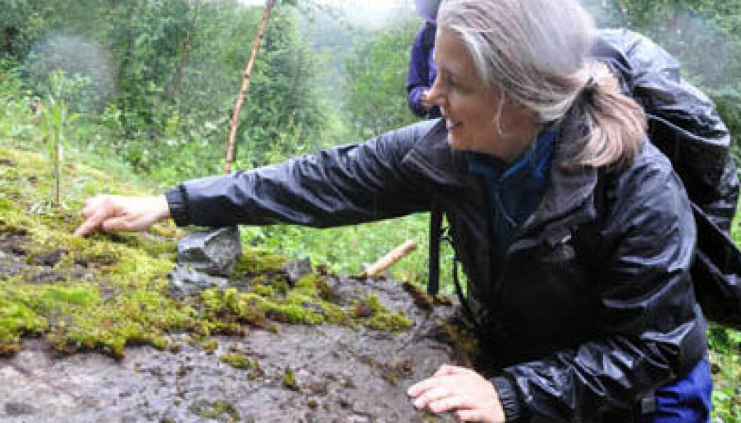 Geolog Gurli Meyer undersøker klebersteinen i Stolpelia ved Misvær i Nordland. Gudmund Løvø