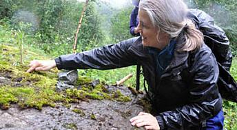 Kartlegger steinverdier i Nord-Norge