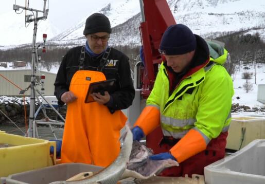 Hvor lenge bør fiskegarnet stå i sjøen?