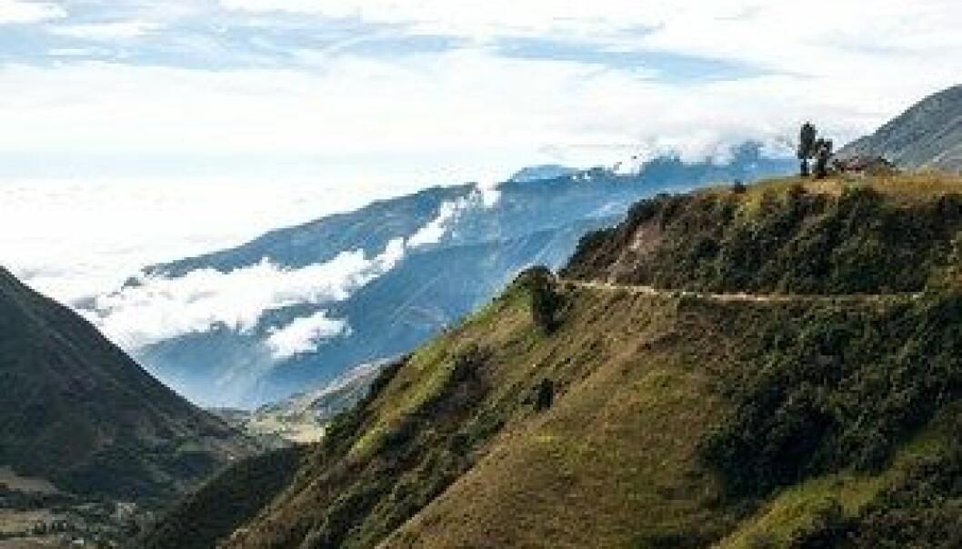 Lønner seg med karbonlagring i Andesfjellene