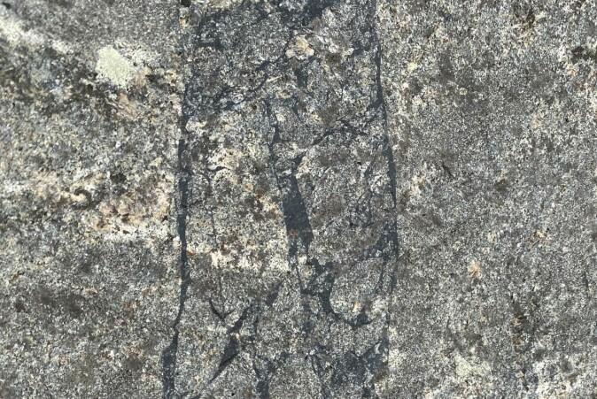 Et fossilt jordskjelv (svarte linjer) som er bevart i stein i Lofoten.