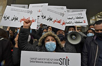 How do journalists in the Middle East cope with political pressure?