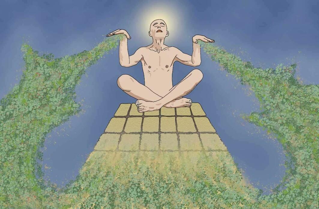 Mennesket har satt seg trygt til rette på toppen av skapelsens åndspyramide.
