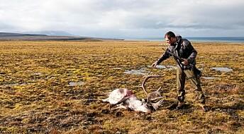 Jegere rapporterer om reinen på Svalbard