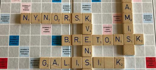 Nynorsk og tegnspråk anerkjennes som egne språk