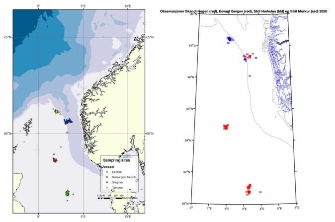 Kartet viser de fire forskjellige prøvetakingsstedene: Ekofisk, Sleipner, Tampen og norskerenna. Kartet illustrerer antall prøver som er tatt i prosjektet (venstre) og posisjonene hvor de har tatt CTD-prøver (høyre).