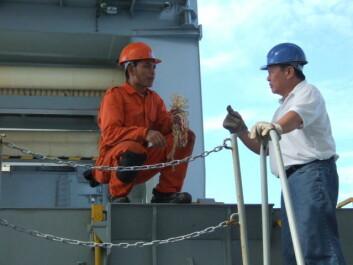 Offiserskorpset om bord på den norske handelsflåten sliter med å gjennomføre det de lærer på kurs, og jobber delvis i strid med det de har lært om prosedyrer. (Foto: Sintef)