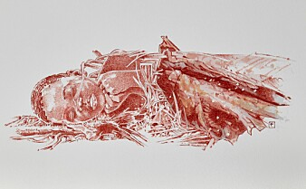 For 78 000 år siden ble et lite barn begravet i en hule i Kenya