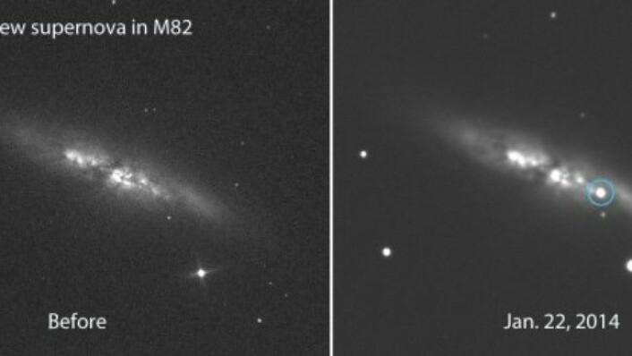 På disse to bildene er det mulig å se forandringen i galaksen M82. Supernovaen vil om en ukes tid lyse mange ganger kraftigere enn dette. (Foto: Ernesto Guido, Nick Howes & Martino Nicolin)