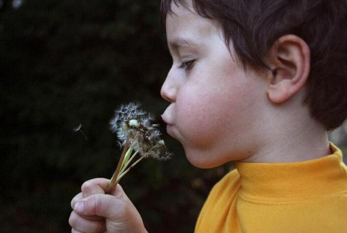 Kanskje begynner barn å utvikle allergi allerede før de blir født – selv om tegnene først viser seg senere i livet. (Foto: Colourbox)