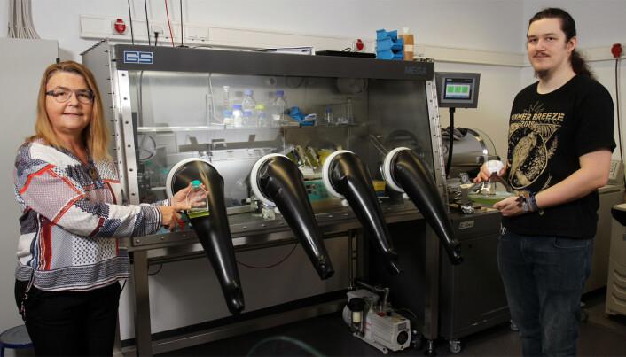 De tyske forskerne Michelle Gehringer og Achim Herrmann viser frem flasker med blågrønnbakterier. Inni det spesielle skapet har bakteriene fått kunstig sollys.