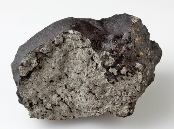 Den ferske bruddsida av denne 1,1 kilo tunge biten av Tissint-meteoritten viser de karakteristiske lommene av svart glass. (Foto: Natural History Museum, London)