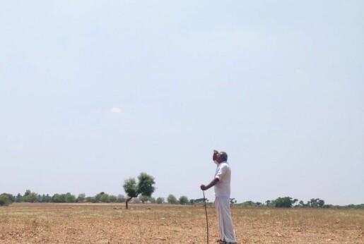 Avskoging og den indiske monsunen