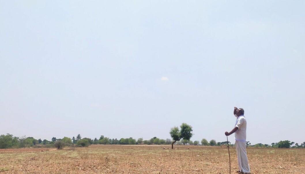 Semiarid landskap i en rural landsby i Sør-India. Faren min, Narayanappa Basappa, ser opp på himmelen.