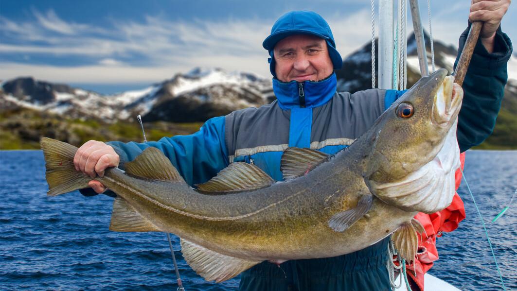 Fiskere, bønder og bygningsarbeidere har arbeid som ofte er fysisk krevende, men all den fysiske aktiviteten kan være positiv.
