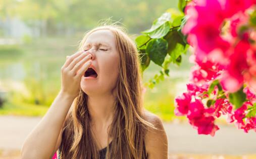 Nyser du av sola? Da har du achoo-syndromet