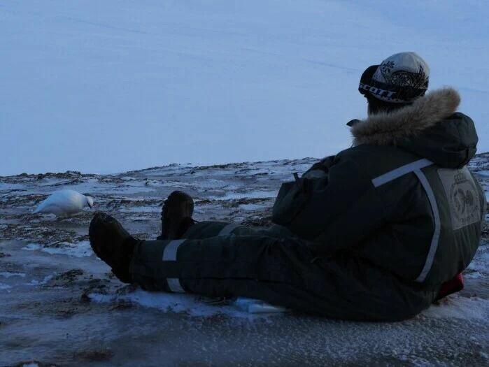 Norsk Polarinstitutt gjør årlige bestandstakseringer av Svalbardrype. Analyser av disse viser at rypa har blitt begunstiget av de midlere vintrene på Svalbard.