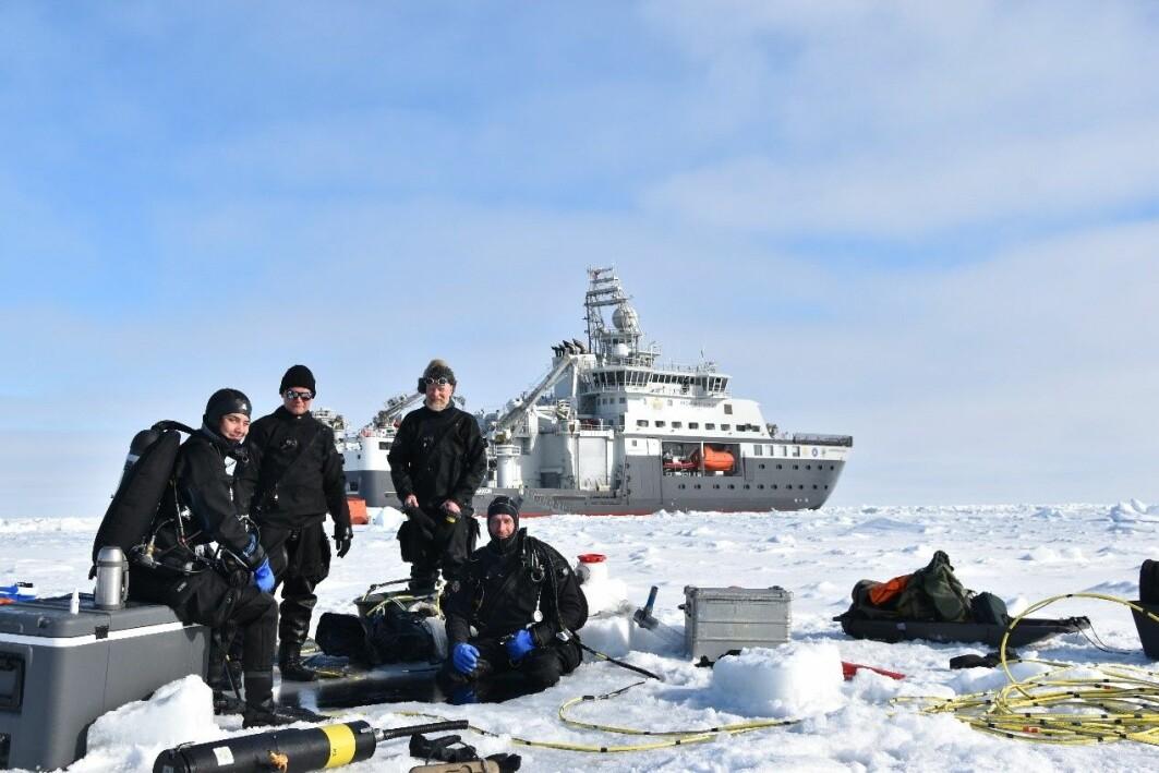 Dykketeamet, Amalia, Mikko, Haakon og Peter.