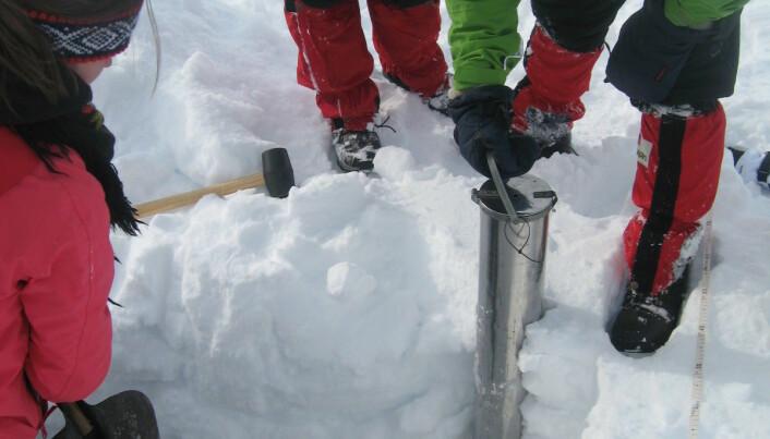 Snømåling med studenter på Haukeli, vinteren 2010.