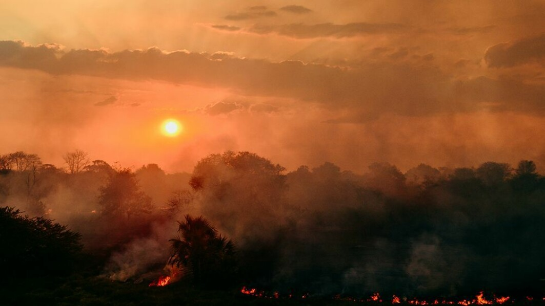 Archaeologists believe the humans who arrived in the Karonga district started burning down the forest to open the landscape for hunting.