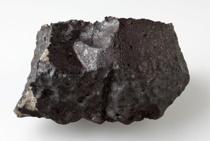 Baksida av den 1,1 kilo tunge steinen er nesten helt dekt av blank, svart smelteskorpe som ble dannet under meteorenes heite ferd igjennom atmosfæren. (Foto: Natural History Museum, London)
