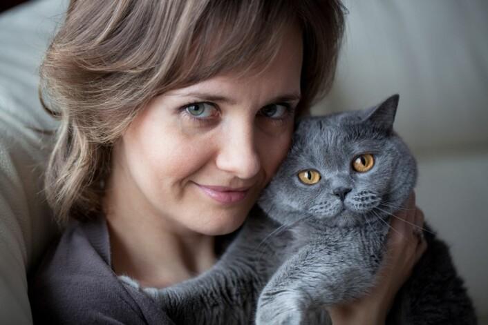 Kos bare med katten om den selv vil. Katter som opplever at mennesker presser seg på dem, er aller mest stresset. Illustrasjonsfoto: iStock