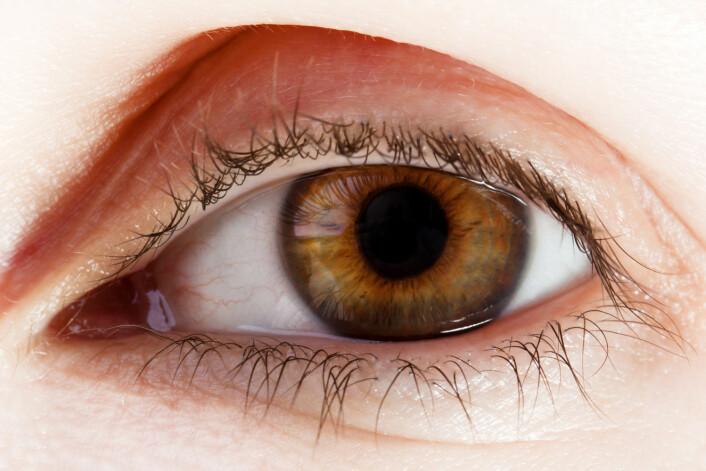 3D-utskrift kan bidra til å kurere blindhet, ifølge en nypublisert artikkel. Men forskerne understreker at de er på et tidlig stadium. (Foto: Colourbox)