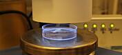 UV-lys beskytter mot skadelige virus