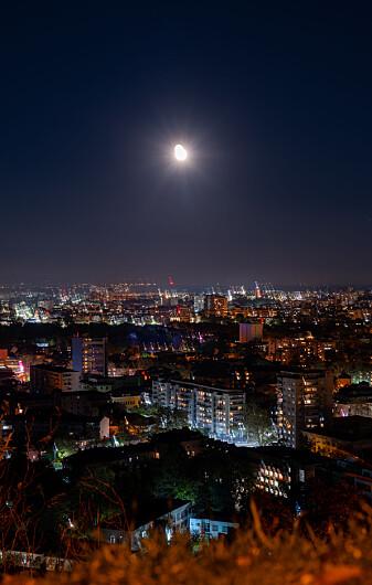 Er det lyset fra månen eller byen som peker fuglene i retning dit de skal?