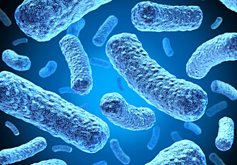 Increase in antibiotic-resistant E. coli infections