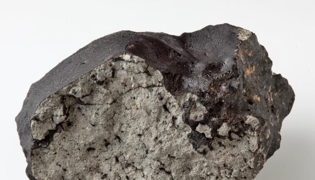 Meteoritt vitner om væske på Mars