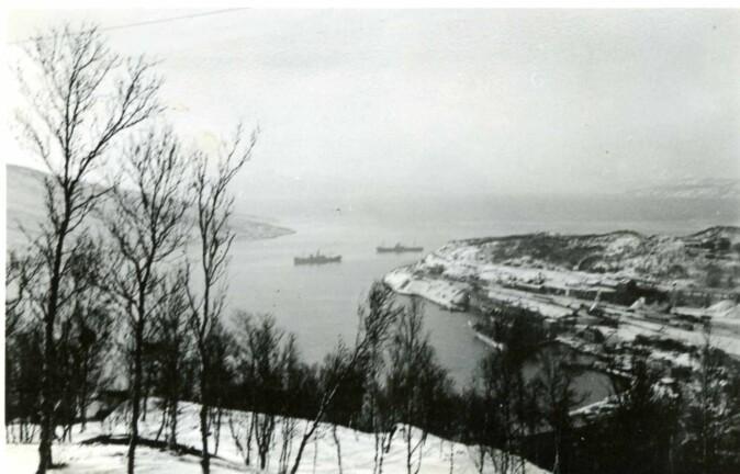 Narvik var utskipingshavn for jernmalmen fra svenske gruver. Det gjorde byen strategisk interessant for de europeiske stormaktene etter krigsutbruddet i 1939.