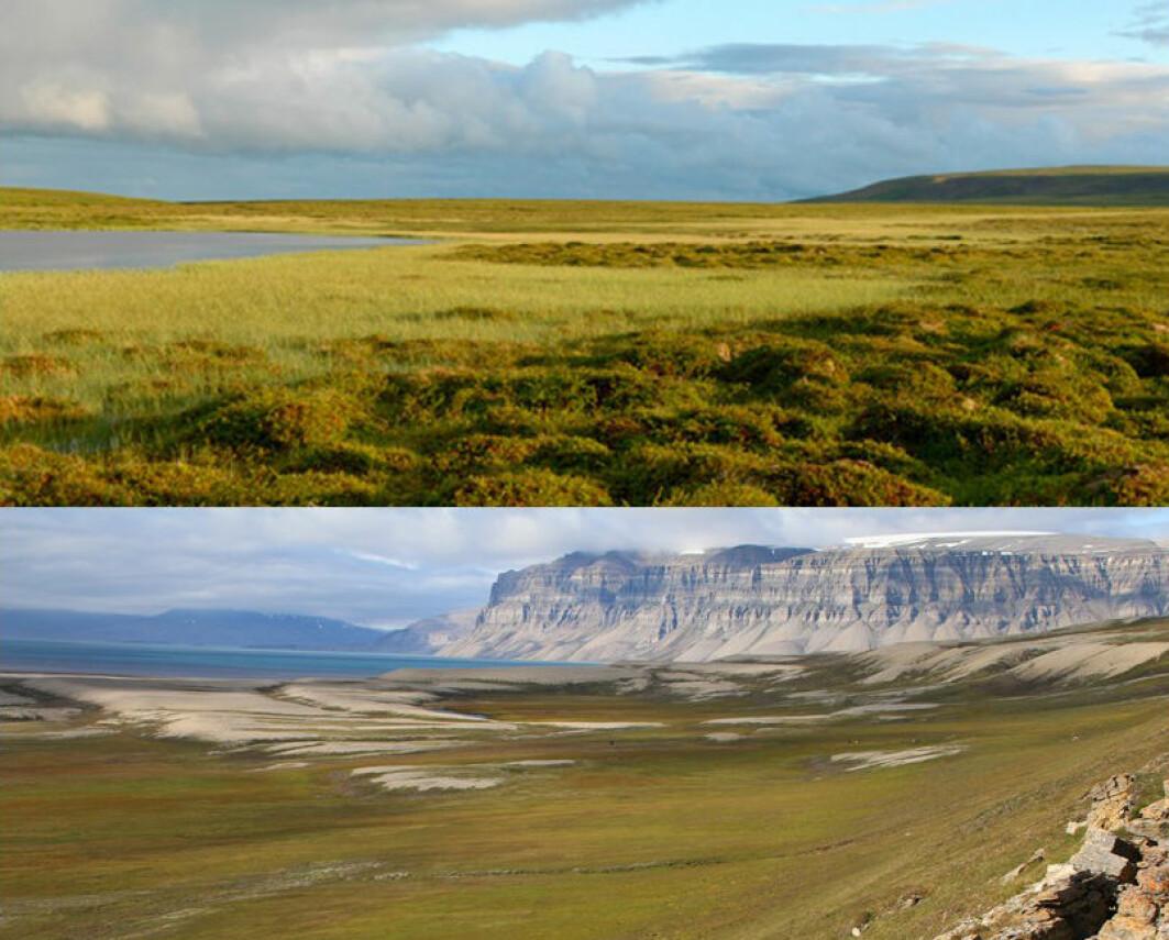 Norsk arktisk tundra er delt inn i to: en lav-arktisk tundra i Finnmark (øverst), og den høy-arktiske tundraen på Svalbard (nederst).