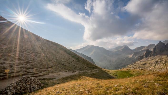 Dette bildet er fra Mercantour-nasjonalparken i Frankrike, samme område som forskningen som har blitt gjennomgått stammer fra. Dette er altså de sørvestlige alpene.