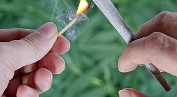Sammenheng mellom cannabisbruk og vold