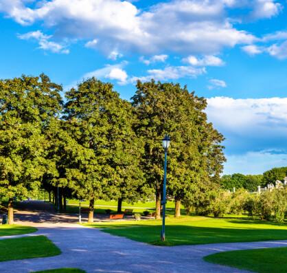 Gjør flere parker at folk rører mer på seg?