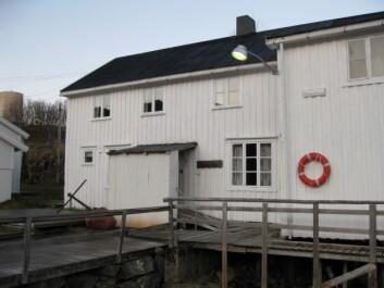 Kulturminner kan både knytte innbyggerne nærmere til bygda eller byen sin og gi grunnlag for næringsutvikling. Her fiskeværet Skipnes i Øksnes kommune i Nordland. (Foto: Nordland fylkeskommune)