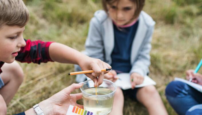 Barn lærer best i naturen – hvis de voksne følger opp