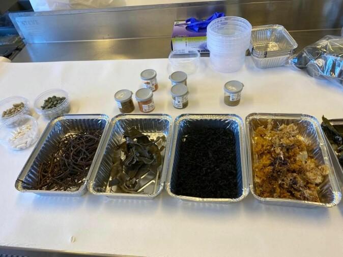 Noen av de analyserte produktene: kosttilskudd, matvarer og tørket tang og tare.
